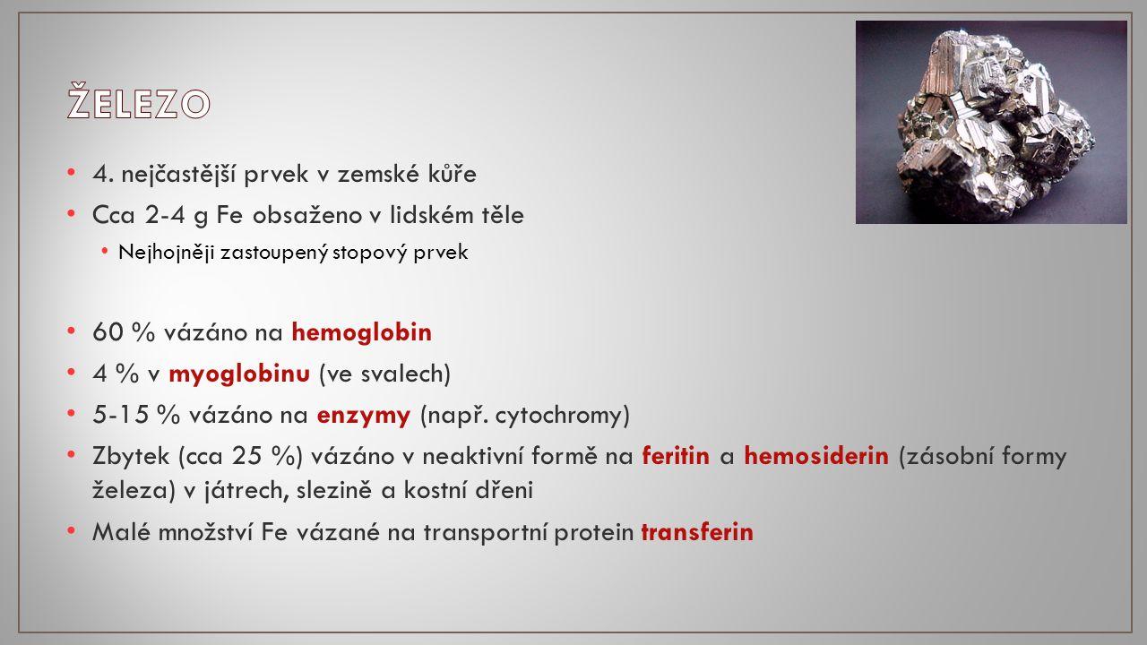 4. nejčastější prvek v zemské kůře Cca 2-4 g Fe obsaženo v lidském těle Nejhojněji zastoupený stopový prvek 60 % vázáno na hemoglobin 4 % v myoglobinu