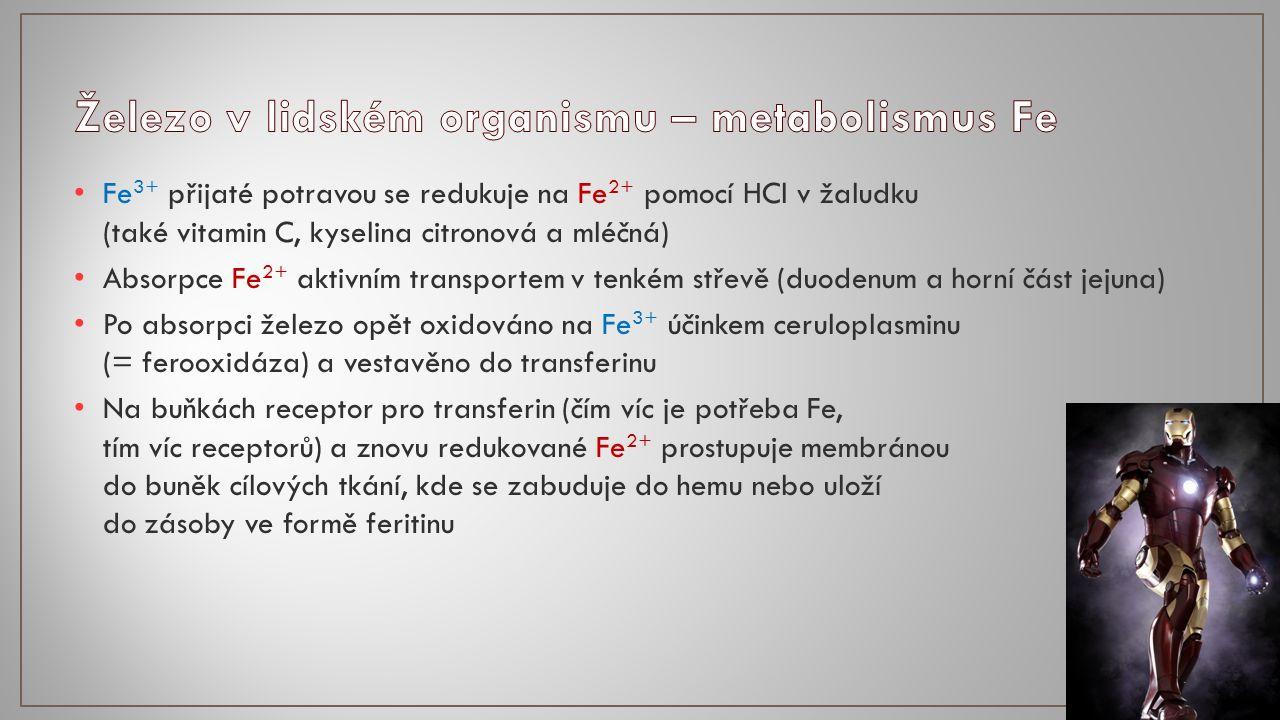 Vstřebává se v žaludku a celém tenkém střevě (klesá za větší přítomnosti Zn, Fe a vitaminu C) Ve střevní sliznici vázána na metalothionein Krví přenášena pomocí proteinu albuminu nebo transkupreinu do jater V játrech Cu zabudována především do ceruloplazminu Vylučována především žlučí do stolice, velmi malé množství močí