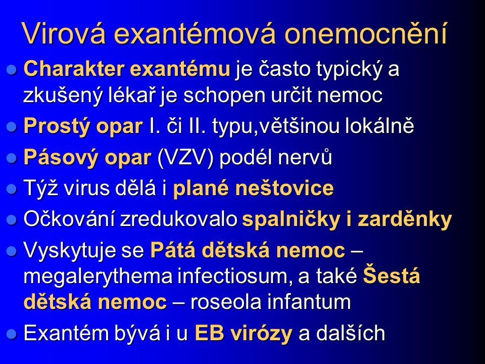 Virová exantémová onemocnění Charakter exantému je často typický a zkušený lékař je schopen určit nemoc Charakter exantému je často typický a zkušený