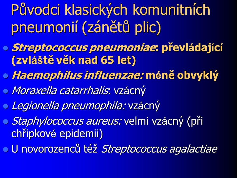 Původci klasických komunitních pneumonií (zánětů plic) Streptococcus pneumoniae: převl á daj í c í (zvl áš tě věk nad 65 let) Streptococcus pneumoniae