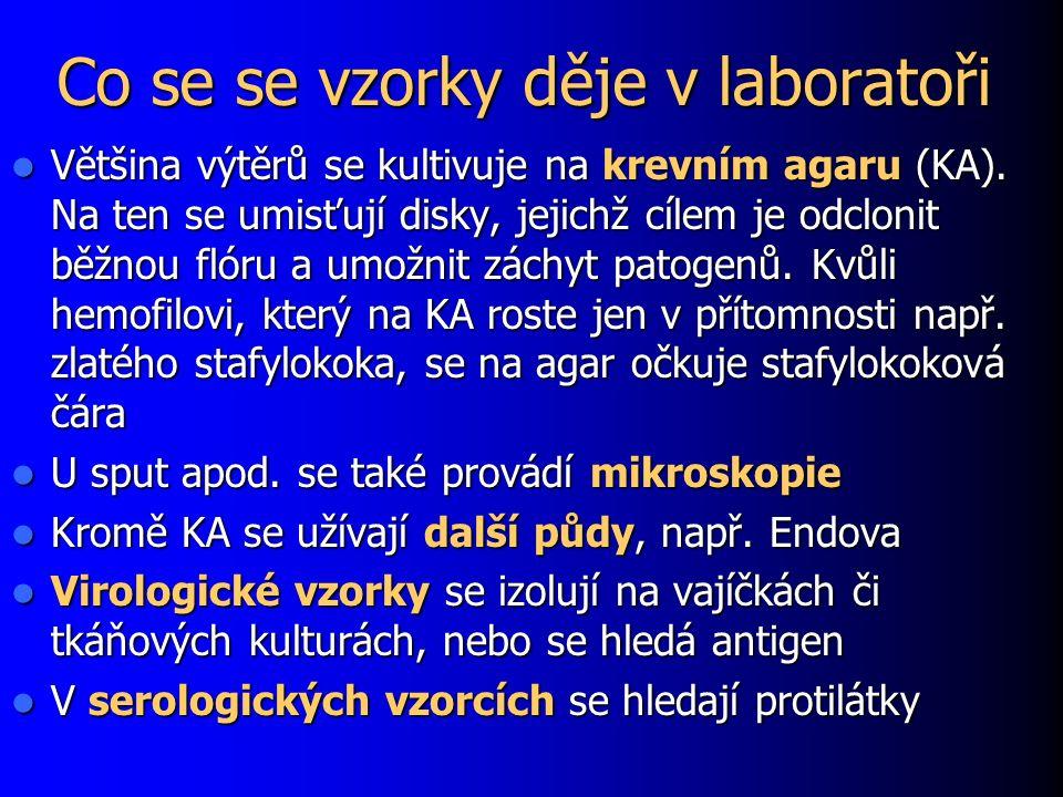 Co se se vzorky děje v laboratoři Většina výtěrů se kultivuje na krevním agaru (KA). Na ten se umisťují disky, jejichž cílem je odclonit běžnou flóru