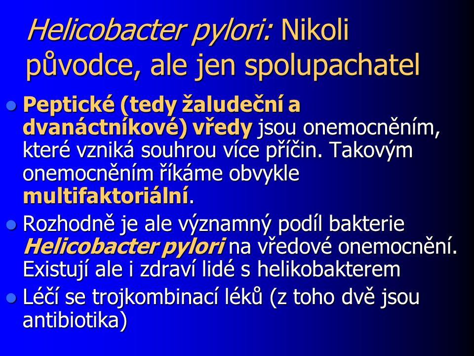 Helicobacter pylori: Nikoli původce, ale jen spolupachatel Peptické (tedy žaludeční a dvanáctníkové) vředy jsou onemocněním, které vzniká souhrou více