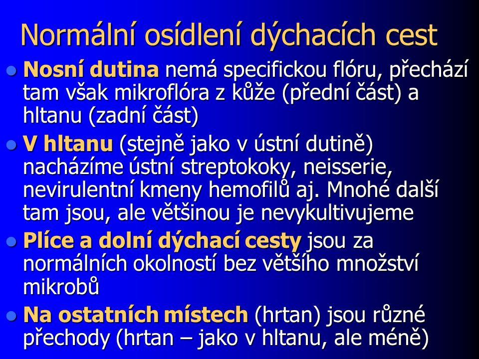Původci atypických komunitních pneumonií U dospělých nejčastěji atypické bakterie (není možno je prokazovat ze sputa, pouze protilátky v séru): Mycoplasma pneumoniae Mycoplasma pneumoniae Chlamydia pneumoniae Chlamydia pneumoniae U malých dětí převládají respirační viry (RSV, chřipka A, adenoviry) U novorozenců případně Chlamydia trachomatis, serotypy D až K (perinatálně získaný)