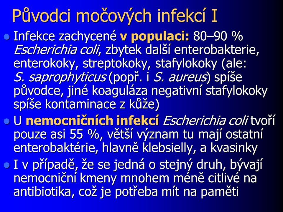 Původci močových infekcí I Infekce zachycené v populaci: 80–90 % Escherichia coli, zbytek další enterobakterie, enterokoky, streptokoky, stafylokoky (