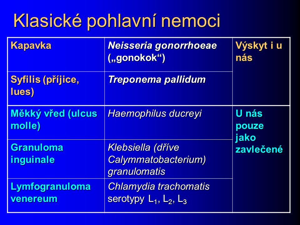 """Klasické pohlavní nemoci Kapavka Neisseria gonorrhoeae (""""gonokok"""") Výskyt i u nás Syfilis (příjice, lues) Treponema pallidum Měkký vřed (ulcus molle)"""
