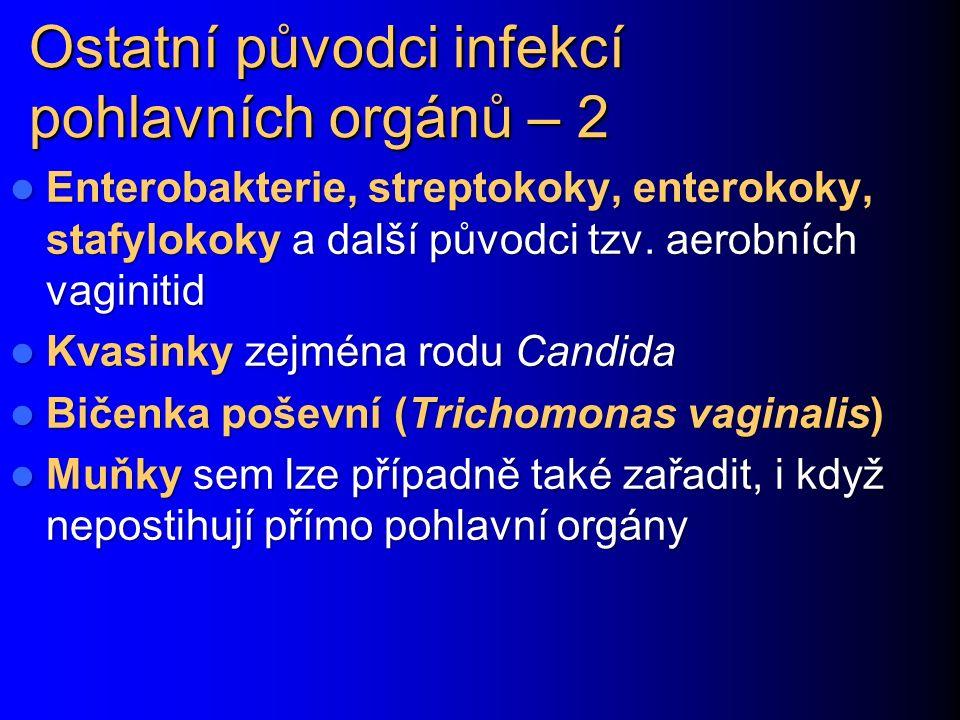 Ostatní původci infekcí pohlavních orgánů – 2 Enterobakterie, streptokoky, enterokoky, stafylokoky a další původci tzv. aerobních vaginitid Enterobakt