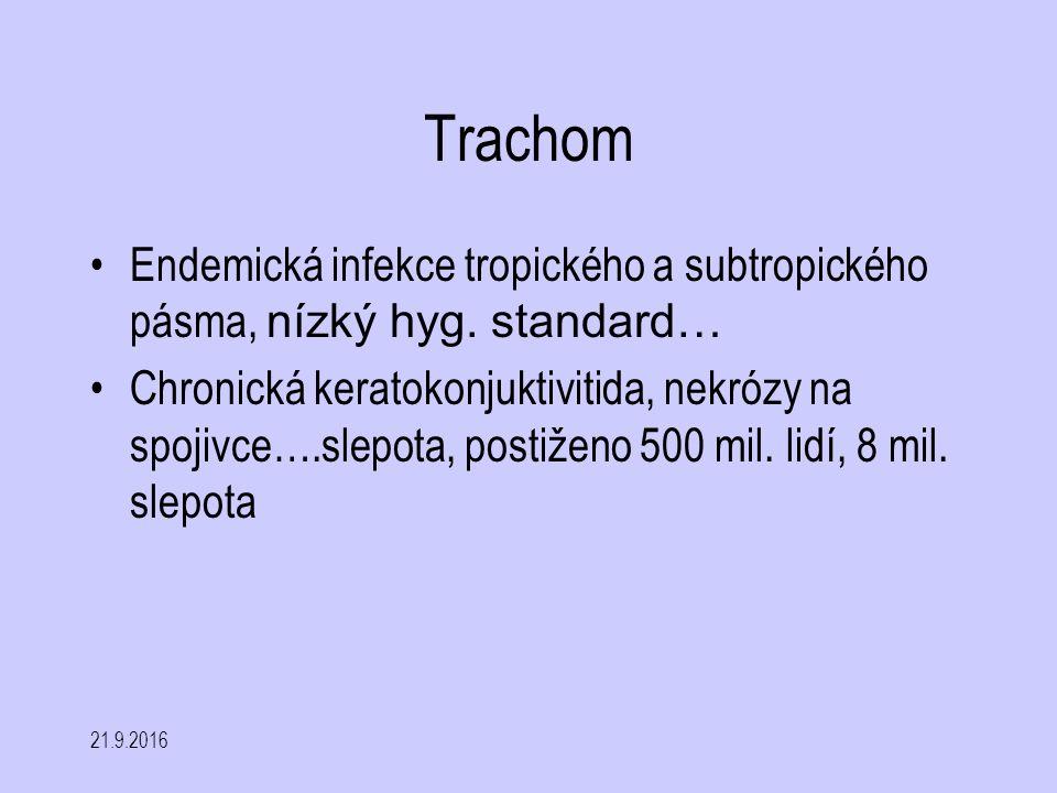 21.9.2016 Trachom Endemická infekce tropického a subtropického pásma, nízký hyg. standard… Chronická keratokonjuktivitida, nekrózy na spojivce….slepot