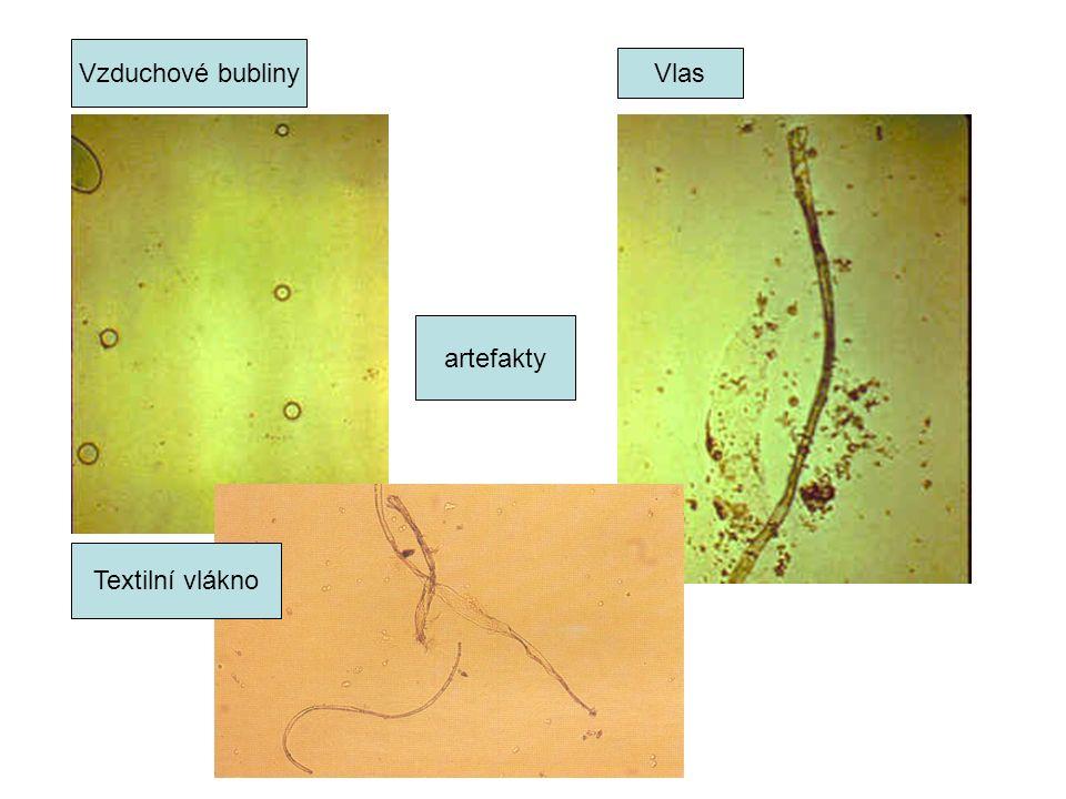 Vzduchové bubliny Vlas Textilní vlákno artefakty