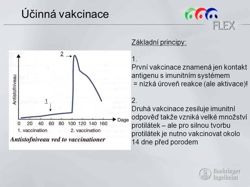 Účinná vakcinace Základní principy: 1.