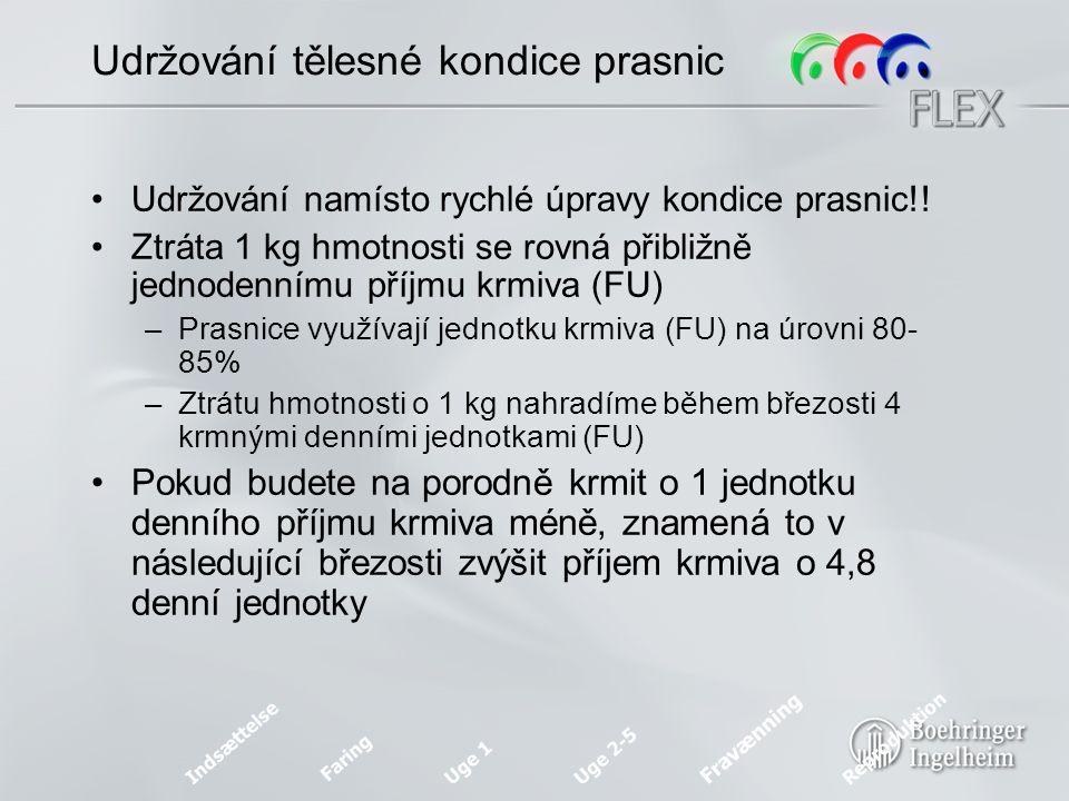 Skóre tělesné kondice u prasnic Indsættelse Faring Uge 1 Uge 2-5 Fravænning Reproduktion Source: Info Svin