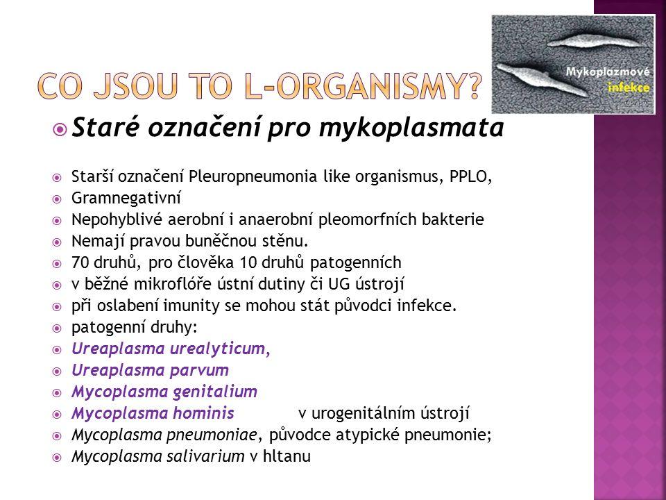  Staré označení pro mykoplasmata  Starší označení Pleuropneumonia like organismus, PPLO,  Gramnegativní  Nepohyblivé aerobní i anaerobní pleomorfních bakterie  Nemají pravou buněčnou stěnu.