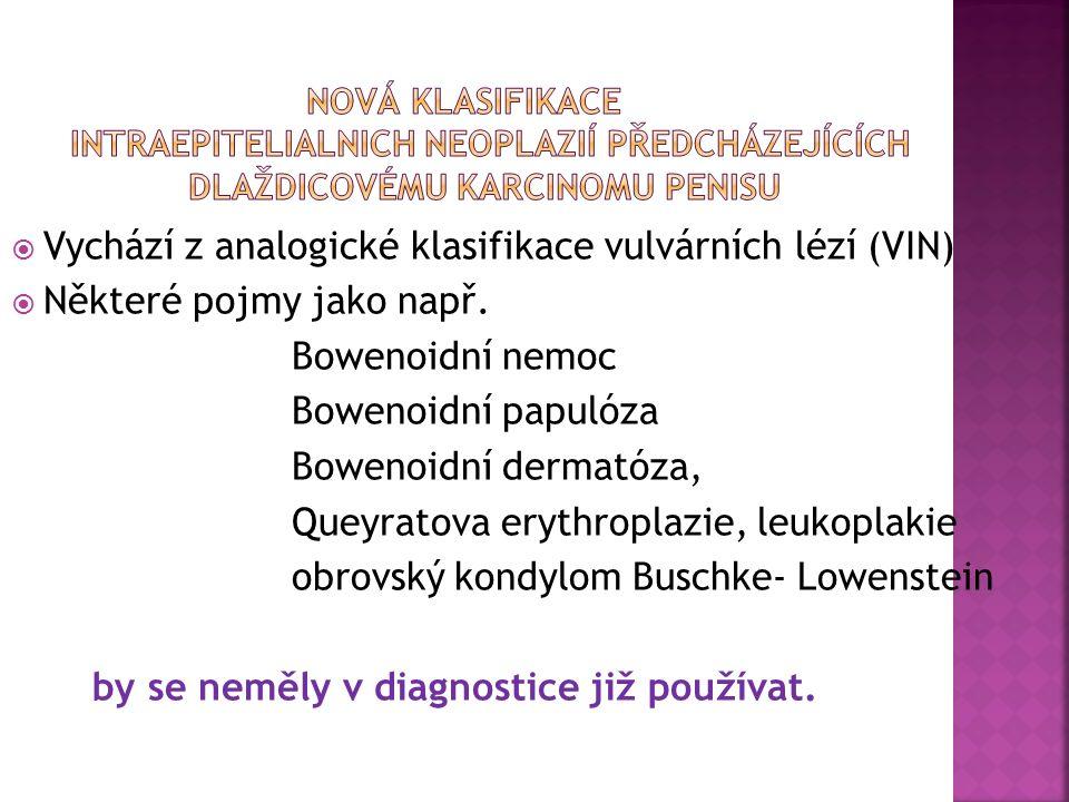  Vychází z analogické klasifikace vulvárních lézí (VIN)  Některé pojmy jako např.