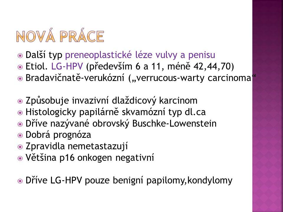  Další typ preneoplastické léze vulvy a penisu  Etiol.