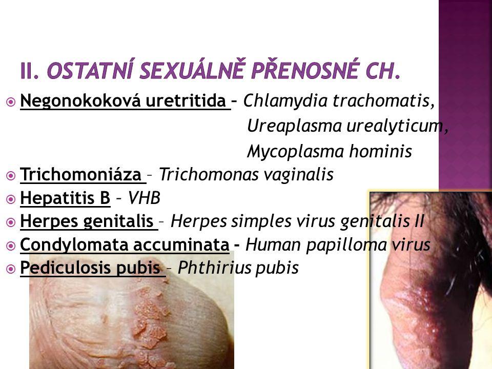 G- diplokok Neiseria gonorrhoeae  ID – 2-7 dní  Symptomy - u muže – ak.