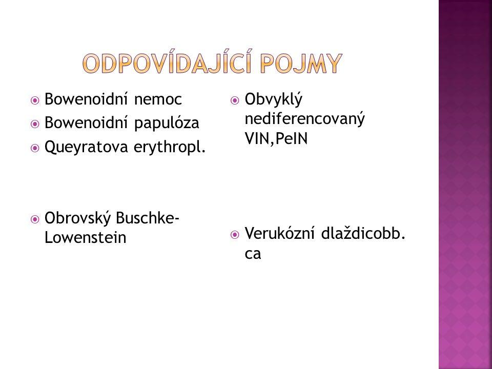  Bowenoidní nemoc  Bowenoidní papulóza  Queyratova erythropl.