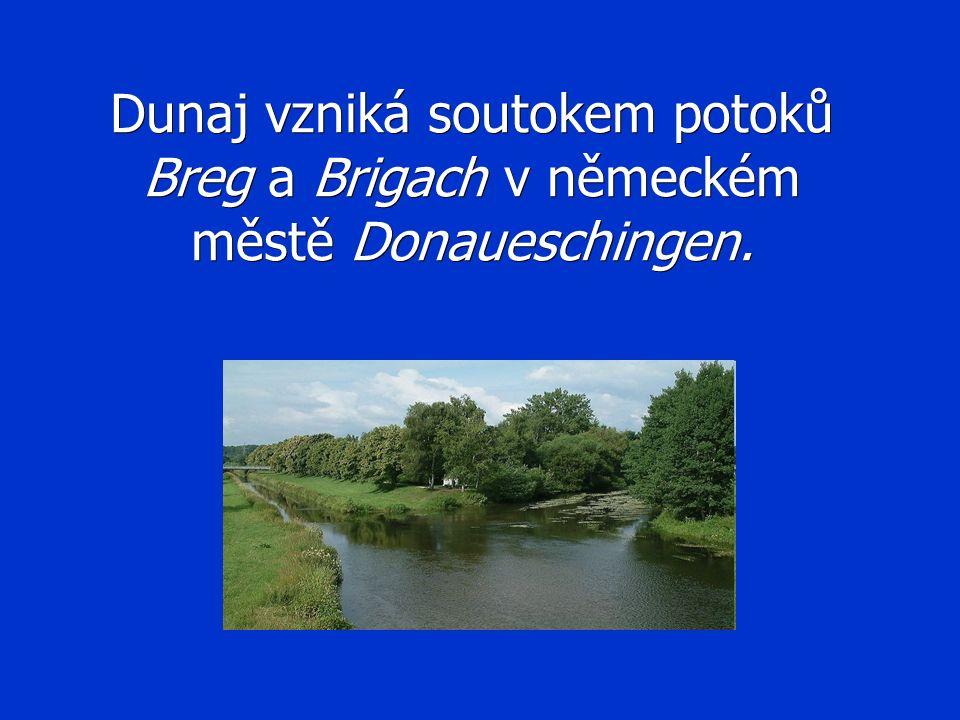 Dunaj vzniká soutokem potoků Breg a Brigach v německém městě Donaueschingen.