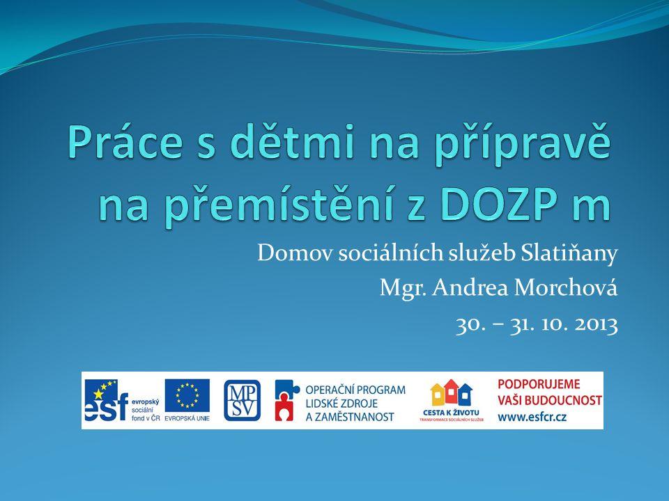 Domov sociálních služeb Slatiňany Mgr. Andrea Morchová 30. – 31. 10. 2013