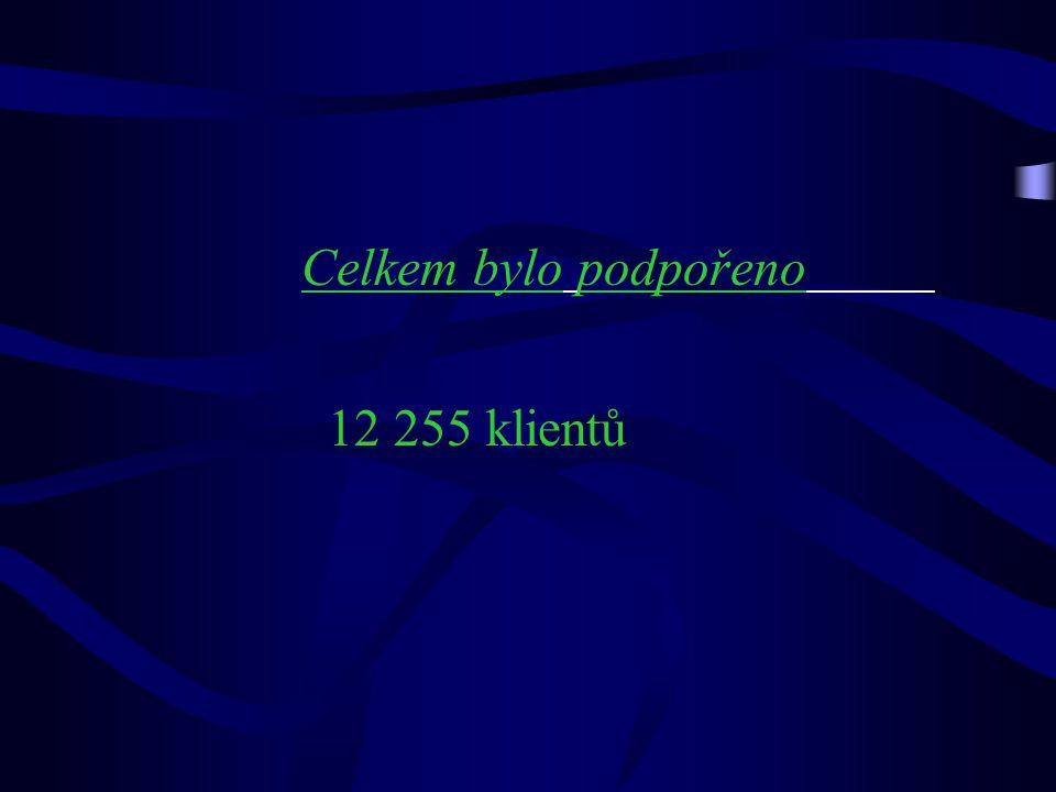 Celkem bylo podpořeno 12 255 klientů