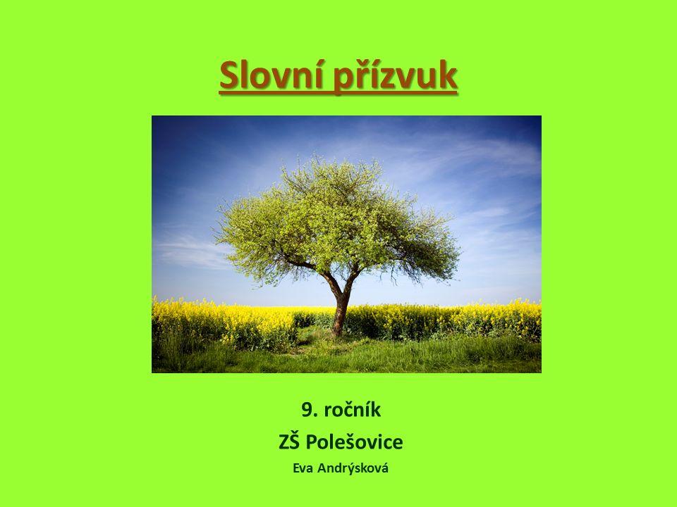 Slovní přízvuk 9. ročník ZŠ Polešovice Eva Andrýsková