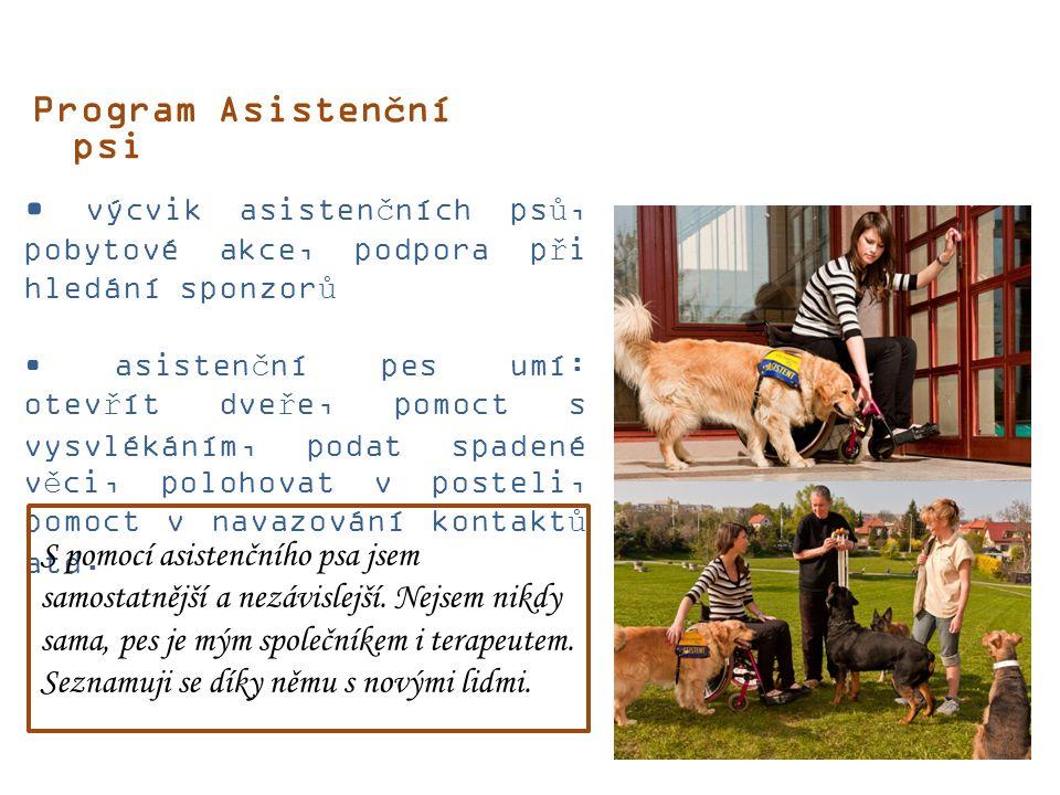 Program Asistenční psi výcvik asistenčních psů, pobytové akce, podpora při hledání sponzorů asistenční pes umí: otevřít dveře, pomoct s vysvlékáním, podat spadené věci, polohovat v posteli, pomoct v navazování kontaktů atd.