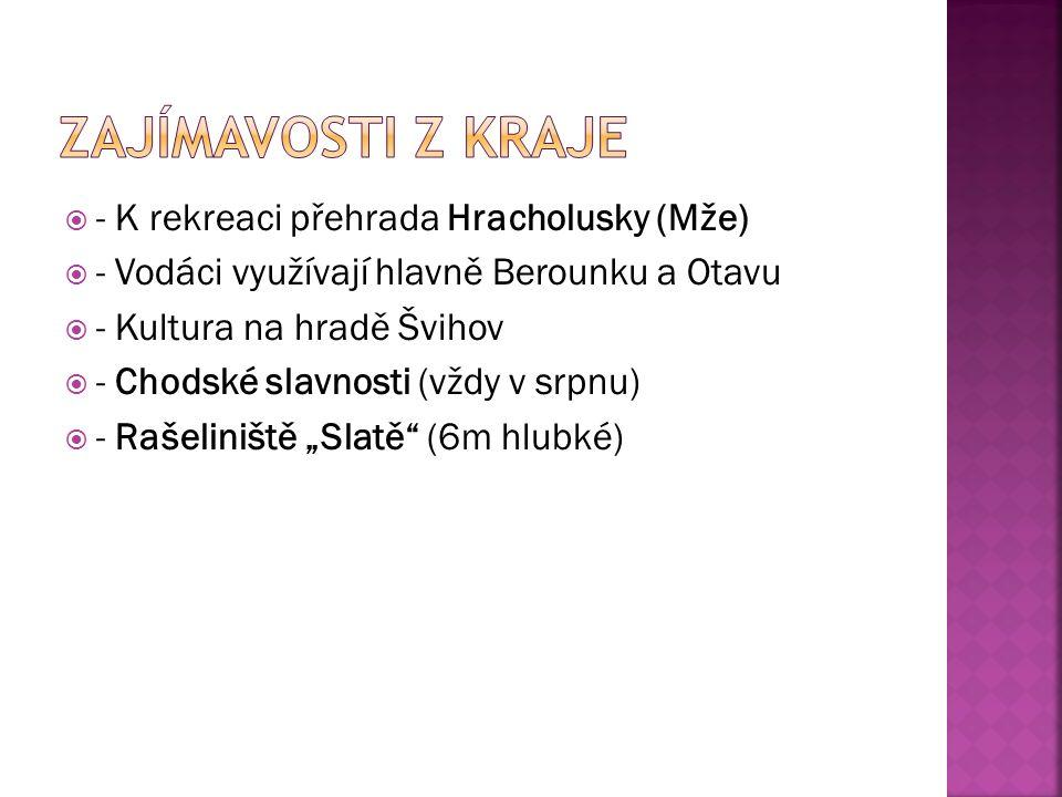 """ - K rekreaci přehrada Hracholusky (Mže)  - Vodáci využívají hlavně Berounku a Otavu  - Kultura na hradě Švihov  - Chodské slavnosti (vždy v srpnu)  - Rašeliniště """"Slatě (6m hlubké)"""