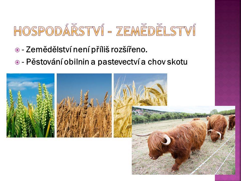  - Zemědělství není příliš rozšířeno.  - Pěstování obilnin a pastevectví a chov skotu