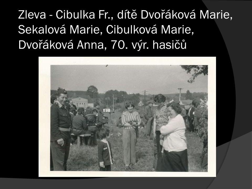 Zleva - Cibulka Fr., dítě Dvořáková Marie, Sekalová Marie, Cibulková Marie, Dvořáková Anna, 70. výr. hasičů