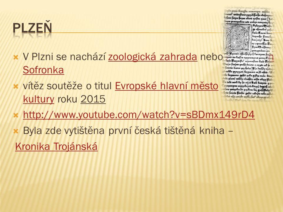  Východně od Plzně  První zmínka o Rokycanech pochází již z roku 1110 (jedná se o jedno z nejstarších měst v Čechách)  Výroba kol Favorit  Ložiska kaolinu