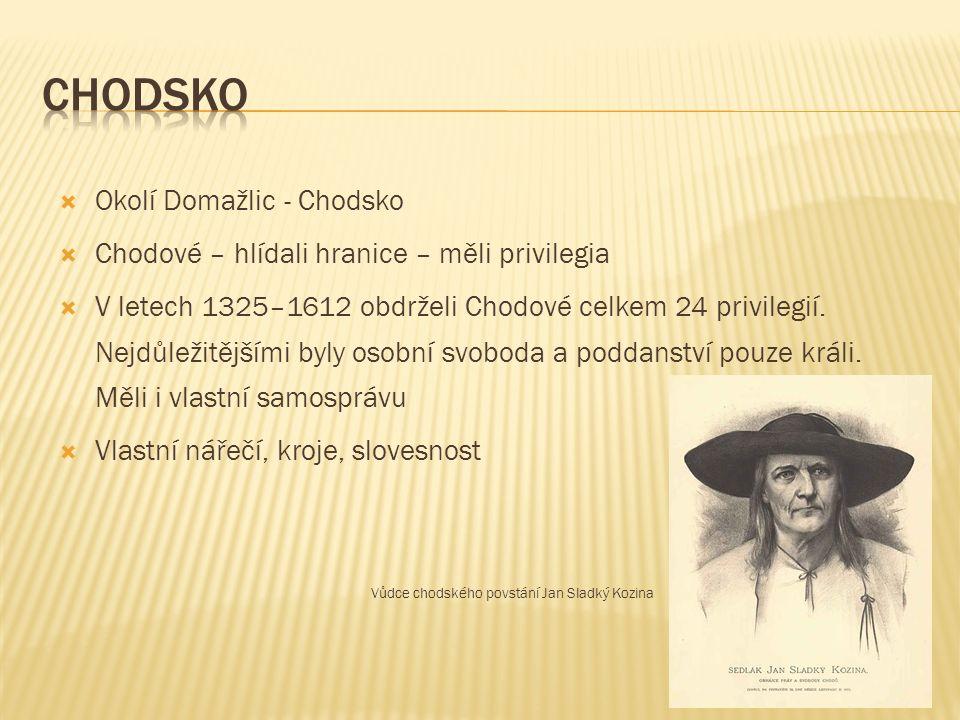  Okolí Domažlic - Chodsko  Chodové – hlídali hranice – měli privilegia  V letech 1325–1612 obdrželi Chodové celkem 24 privilegií.