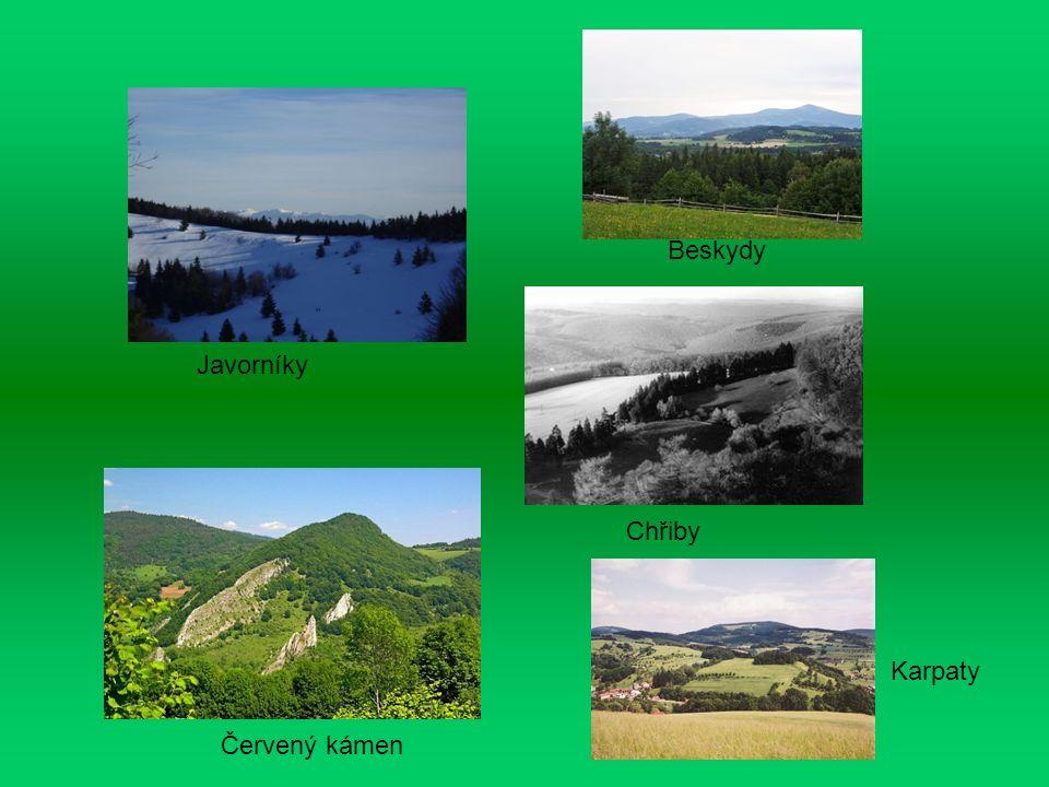 Javorníky Červený kámen Beskydy Chřiby Karpaty