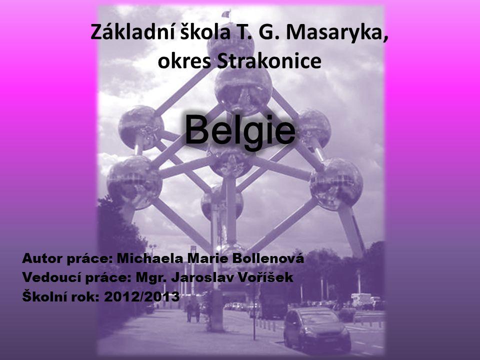 Autor práce: Michaela Marie Bollenová Vedoucí práce: Mgr. Jaroslav Voříšek Školní rok: 2012/2013