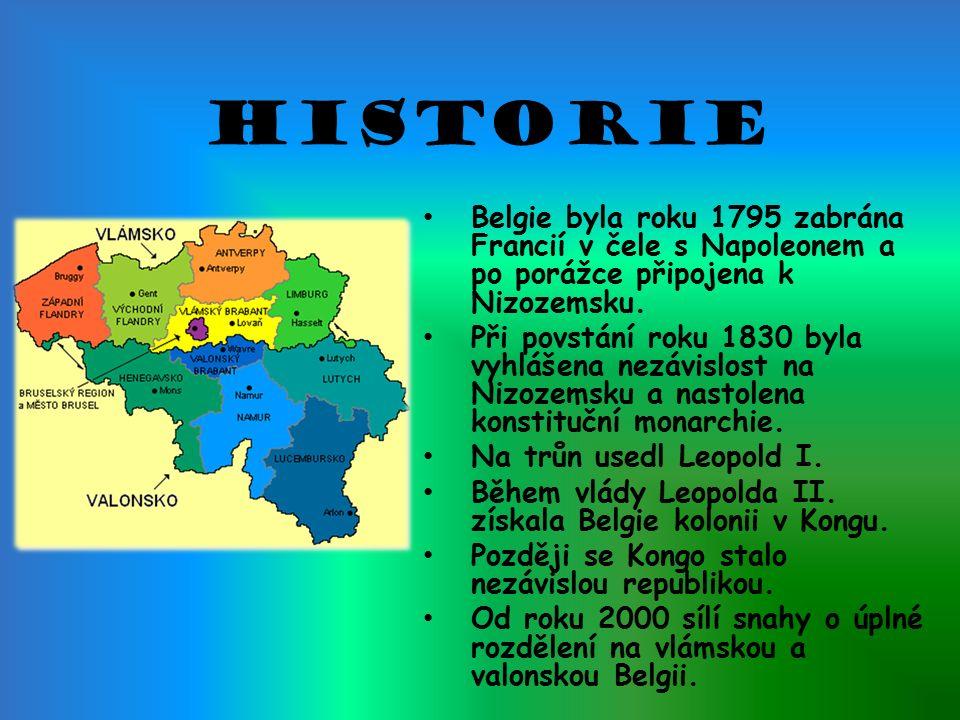 Historie Belgie byla roku 1795 zabrána Francií v čele s Napoleonem a po porážce připojena k Nizozemsku.