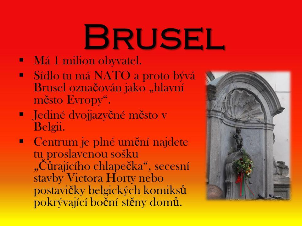 """Brusel  Má 1 milion obyvatel.  Sídlo tu má NATO a proto bývá Brusel ozna č ován jako """"hlavní m ě sto Evropy"""".  Jediné dvojjazy č né m ě sto v Belgi"""