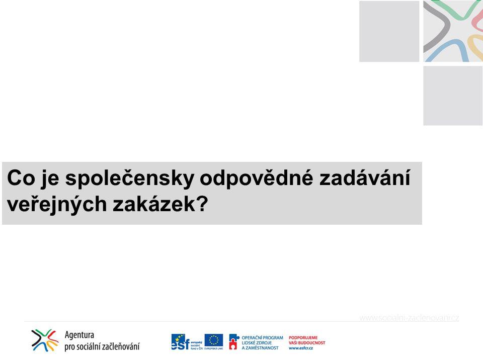 Společensky odpovědné zadávání veřejných zakázek jako potenciál v ČR Příležitost získat ekonomicky výhodné nabídky a zároveň podpořit zaměstnanost znevýhodněných osob Investice v sociálně vyloučených lokalitách jakožto vytváření pracovních příležitostí Plánování zakázek a využívání rámcových smluv vedoucí k podpoře malých a středních podniků Sociální podmínky v zadávacích řízeních jako příležitost k zapojení sociálních podniků Podpora místní zaměstnanosti a místních podniků při dodržení zásad rovného zacházení a zákazu diskriminace