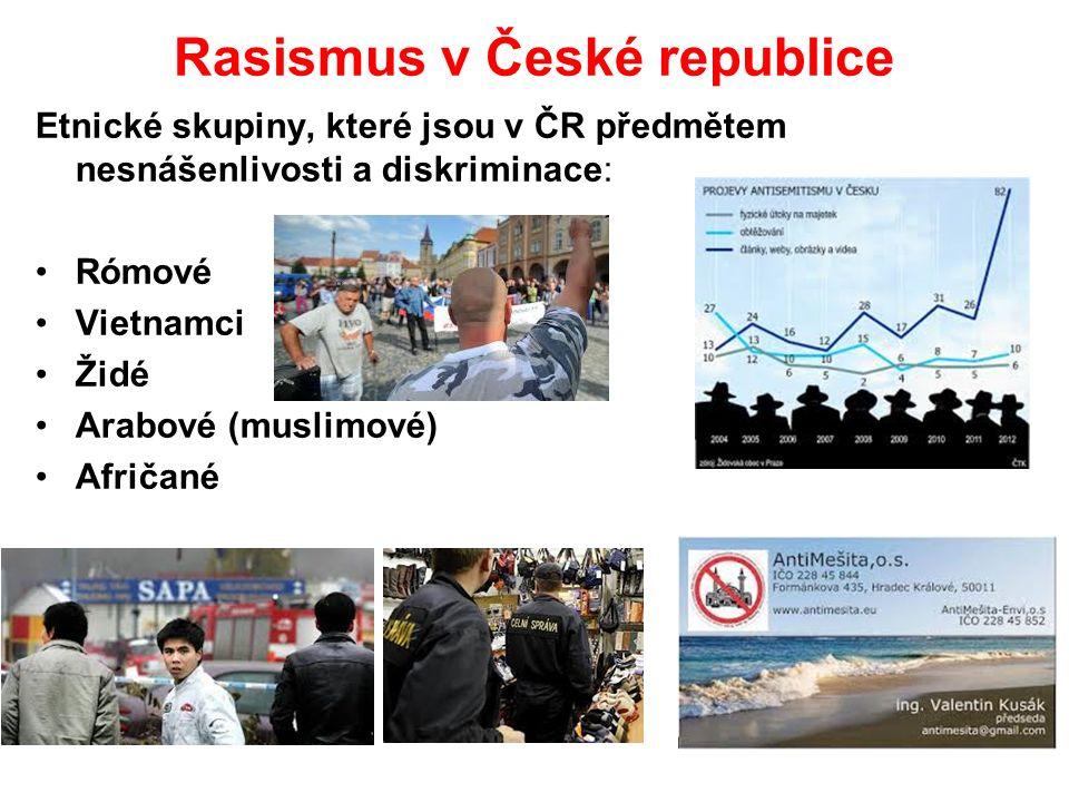 Rasismus v České republice Etnické skupiny, které jsou v ČR předmětem nesnášenlivosti a diskriminace: Rómové Vietnamci Židé Arabové (muslimové) Afričané