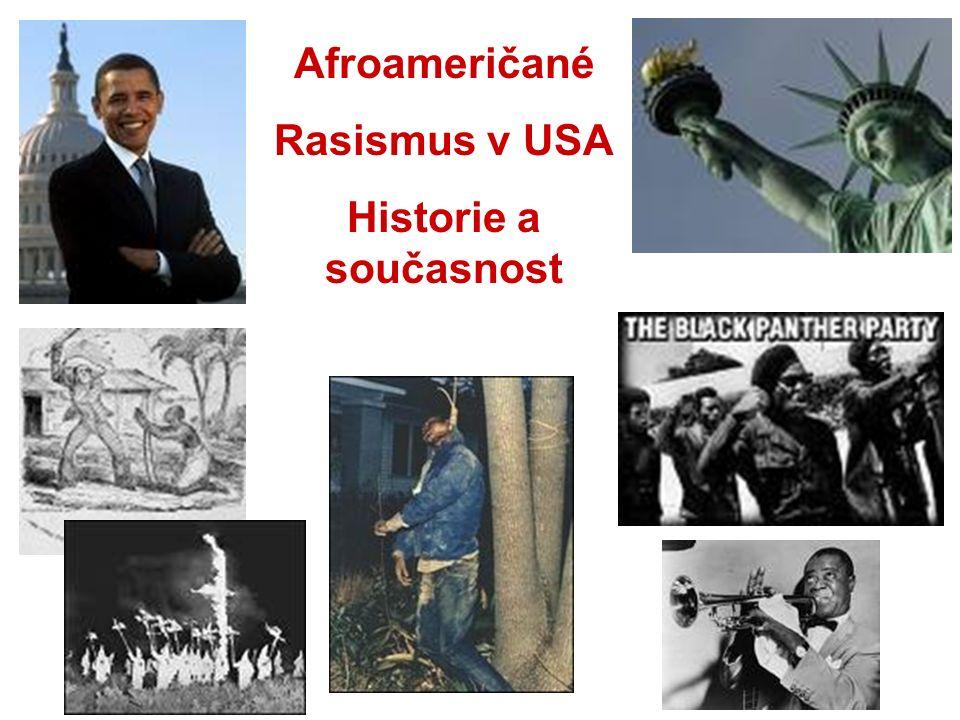 Afroameričané Rasismus v USA Historie a současnost