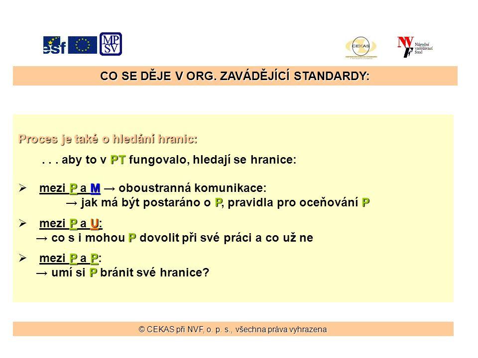 CO SE DĚJE V ORG. ZAVÁDĚJÍCÍ STANDARDY: Proces je také o hledání hranic: PT...