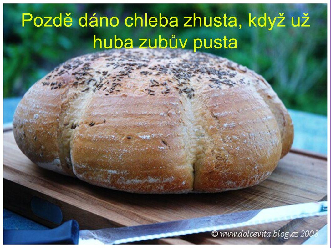 Pozdě dáno chleba zhusta, když už huba zubův pusta