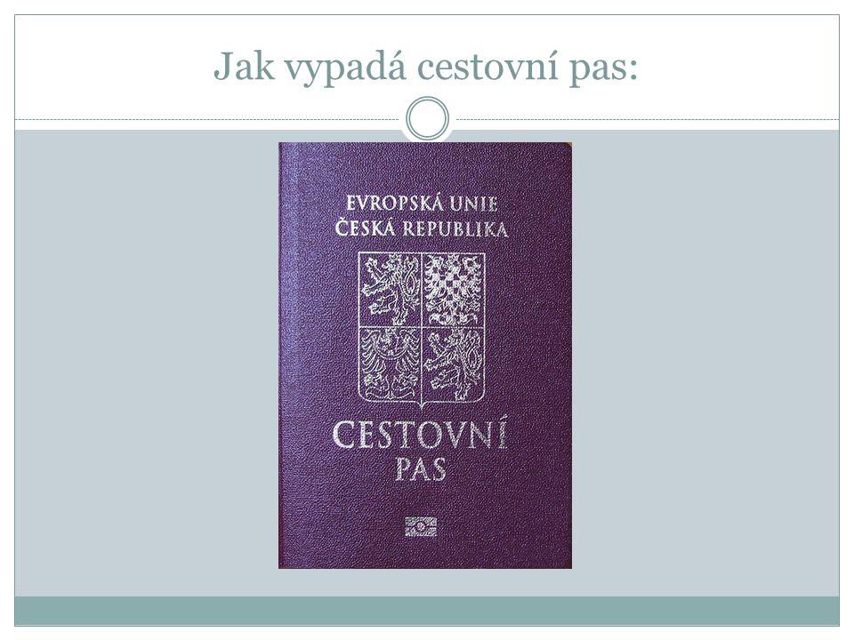 Jak vypadá cestovní pas:
