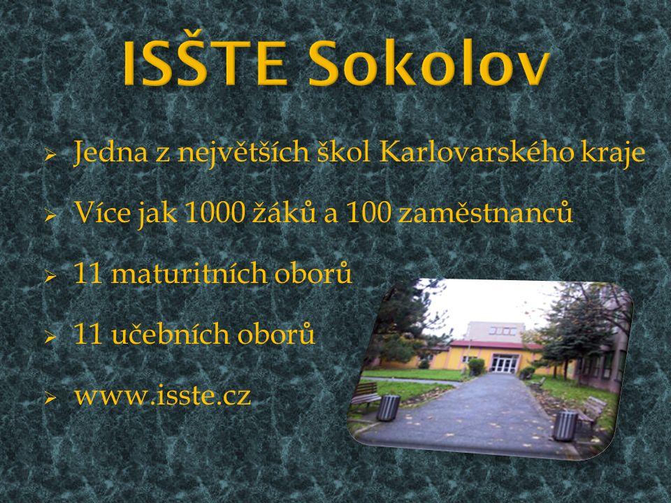  Jedna z největších škol Karlovarského kraje  Více jak 1000 žáků a 100 zaměstnanců  11 maturitních oborů  11 učebních oborů  www.isste.cz