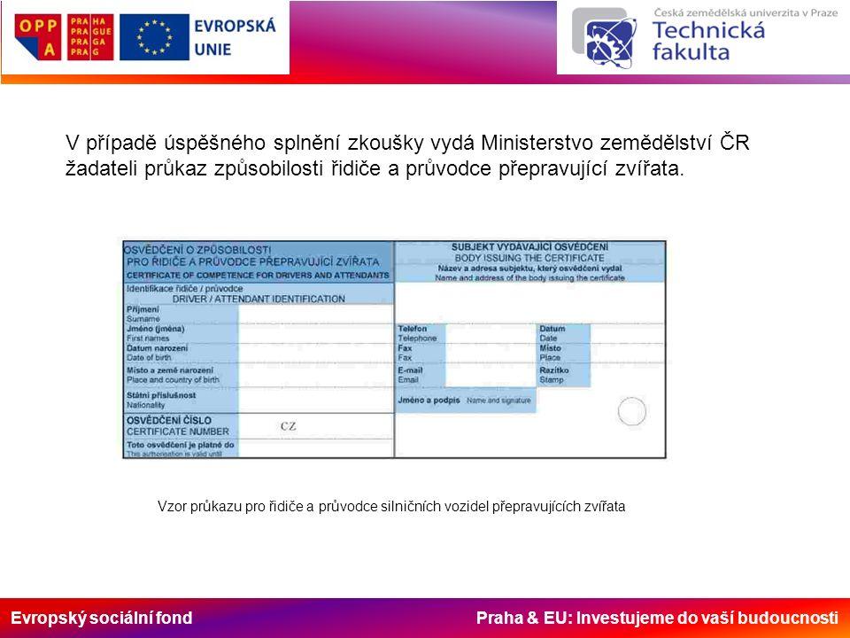 Evropský sociální fond Praha & EU: Investujeme do vaší budoucnosti Vzor průkazu pro řidiče a průvodce silničních vozidel přepravujících zvířata V příp