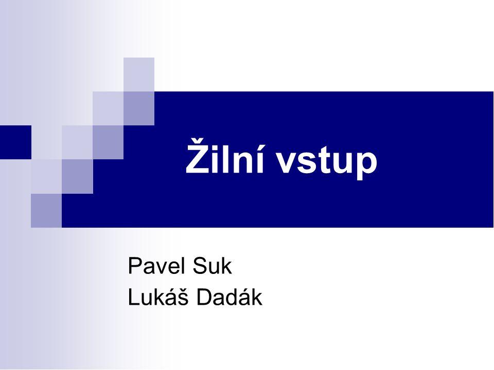 Žilní vstup Pavel Suk Lukáš Dadák