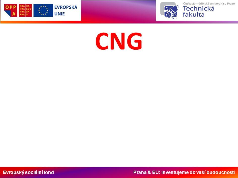 Evropský sociální fond Praha & EU: Investujeme do vaší budoucnosti CNG