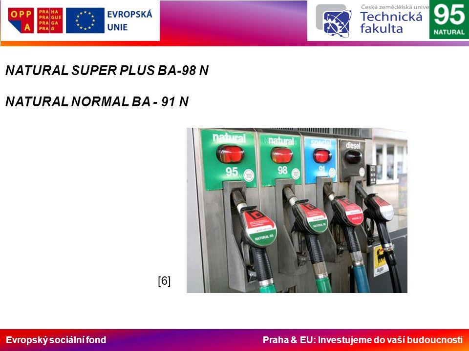 Evropský sociální fond Praha & EU: Investujeme do vaší budoucnosti NATURAL SUPER PLUS BA-98 N NATURAL NORMAL BA - 91 N [6][6]