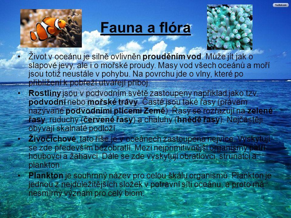 Fauna a flóra Život v oceánu je silně ovlivněn prouděním vod.