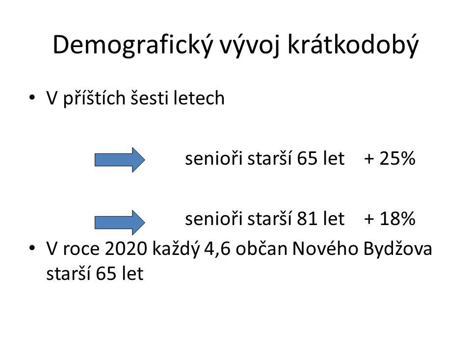 V příštích šesti letech senioři starší 65 let + 25% senioři starší 81 let + 18% V roce 2020 každý 4,6 občan Nového Bydžova starší 65 let