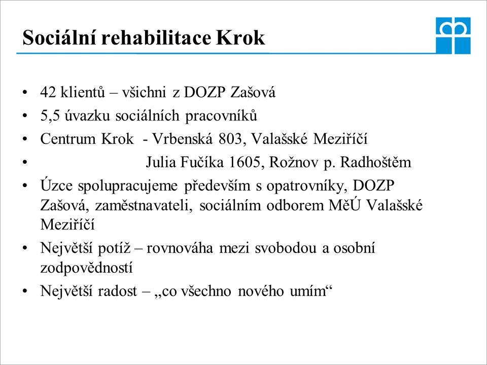 Sociální rehabilitace Krok 42 klientů – všichni z DOZP Zašová 5,5 úvazku sociálních pracovníků Centrum Krok - Vrbenská 803, Valašské Meziříčí Julia Fu