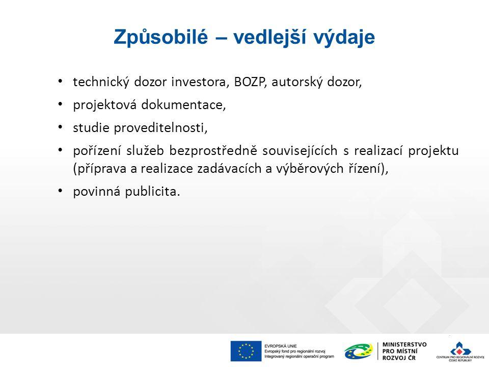 technický dozor investora, BOZP, autorský dozor, projektová dokumentace, studie proveditelnosti, pořízení služeb bezprostředně souvisejících s realizací projektu (příprava a realizace zadávacích a výběrových řízení), povinná publicita.