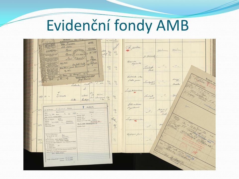 Evidenční fondy AMB
