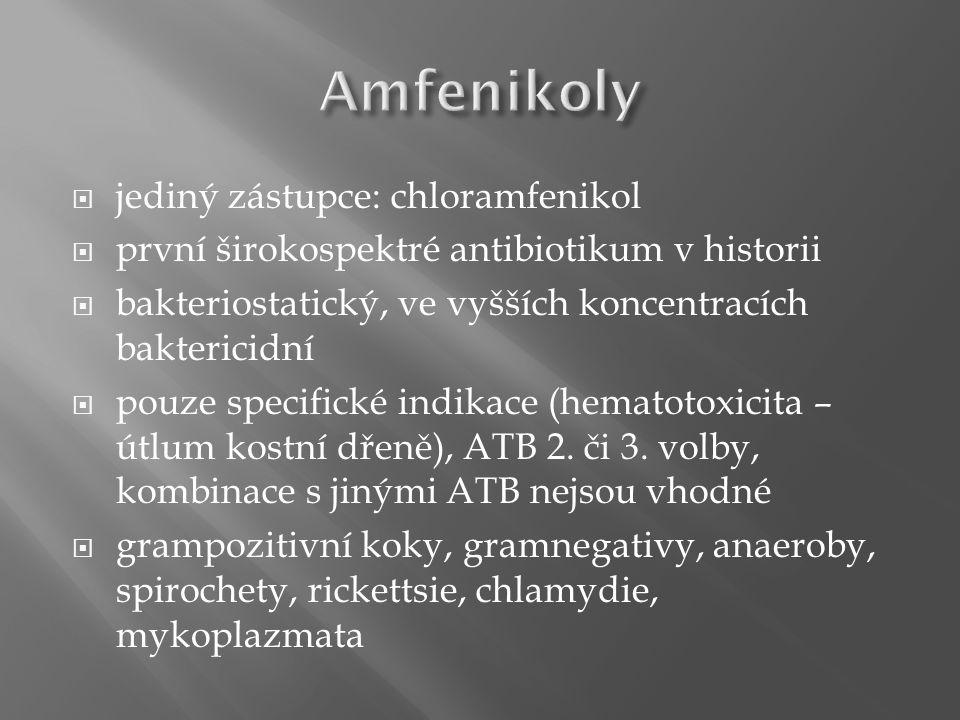  jediný zástupce: chloramfenikol  první širokospektré antibiotikum v historii  bakteriostatický, ve vyšších koncentracích baktericidní  pouze spec